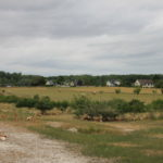 Parcours arboré volailles - Associer agroforesterie et élevage
